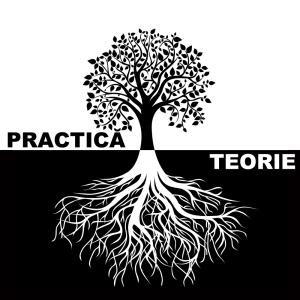 Teorie și Practică